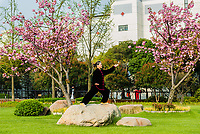 Shanghai, China - April 7, 2013: one old woman exercising tai chi with traditional costume in gucheng park in the city of Shanghai in China on april 7th, 2013
