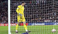 Photo: Paul Thomas/Sportsbeat Images.<br /> England v Croatia. UEFA European Championships Qualifying. 21/11/2007.<br /> <br /> England keeper Scott Carson picks the ball out of his net.
