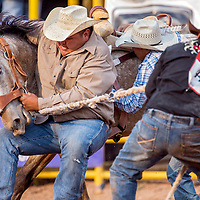 070513       Cable Hoover<br /> <br /> Marshall Allen, left, Dodge Bigthumb and Randy Stewart try to wrangle their horse as they compete in the wild horse race at the Navajo Nation Fourth of July rodeo in Window Rock Friday.