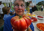 Liz Haines a master Gardener for the Fair Oaks Horticulture Center shows off her big tomato as folks in the background sample the free fruits and vegetables. This was all a part of Harvest Day, it is one of the largest annual gardening events in the Sacramento area, featuring a long list of speakers and demonstrations, educational booths and gardeners showing off their gardens. Picture taken at the Fair Oaks Horticulture Center at Fair Oaks Parkbp