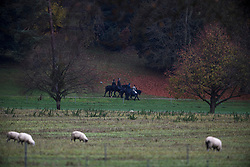 © Licensed to London News Pictures. 22/11/2019. Windsor, UK. Prince Andrew, The Duke of York (second left), is seen riding a horse with Queen Elizabeth II (second right) in the grounds of Windsor Castle estate. Prince Andrew is stepping down from official duties following a Newsnight interview on his relationship with Jeffrey Epstein. Photo credit: Ben Cawthra/LNP