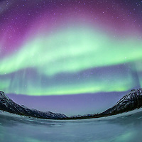 A fish eye view as the aurora borealis swirl in the night sky above the Brooks Range and reflect in a pool of water, Alaska