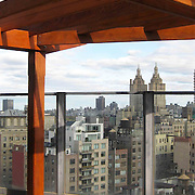 Rosewood pergolas and planters set on 2 seprate terrace in New York City