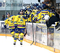 Ishockey , Get-Ligaen , Finalespill <br /> 16.04.15<br /> Hamar OL-Amfi<br /> Storhamar v Stavanger Oilers   2-1<br /> Foto : Dagfinn Limoseth , Digitalsport<br /> Linus Johansson , Storhamar