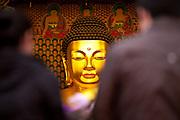 "Menschen beten in einem Tempel waehrend der Feierlichkeiten von Buddhas Geburtstag (2. Mai 2009) im Zentrum der koreanischen Netropole Seoul.<br /> <br /> People praying in  a temple in the center of the korean capital Seoul during the celebrations of Buddhas birthday (2nd of May 2009) which is celebrated according to the Lunisolar calendar. This day is called ""Seokga tansinil"", meaning ""the day of Buddha's birthday""."
