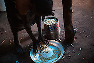 A girl cleans her ration of corn at the Yida refugee camp.  The Lost boys of Sudan may be the best known example of the horror of Sudan's civil war, a conflict that was supposed to end with the independence of the South last July.  Countless South Sudanese boys were forced to flee, separated from their families, walking for days and weeks across hostile lands to the relative safety of a refugee camp. Many died on the way. .Now, this story is repeating itself as thousands of children, separated from their families by constant bombardment, starvation and battles are fleeing the same unresolved conflict, this time in the Nuba mountains of Sudan, where the Khartoum government has been at war with it's own people for over a year. The Sudan government's endless bombing campaigns of civilian targets like schools, churches, markets and boreholes has divided up families and separated children from their parents, and orphaned others..Over 3000 of these children have ended up at the Yida refugee camp, a controversial refuges for the Nuban people close to the North South border that the UN refuses to recognize as a camp for fear of being seen as supporting the rebels. The children have horrific stories. 20 year old John first lost his family in a bombing, he then lost his two younger brothers to starvation, without even the energy to bury them, he walked south for days until he arrived in Yida. 12 year old Rose fled with her entire boarding school after it was bombed and many of here fellow students and teachers killed. Robert watched his family stoned to death after a desperate group of refugees was ambushed by a Northern militia on the border..A few volunteer caretakers and teachers tend to the children. 22 year old Jamina who was separated from her own mother for 11 years during the last war. Today she watches over 500 girls in the same position. Packed into grass huts they built themselves the children try to study, and play and forget the past. ?The only way to stop this w