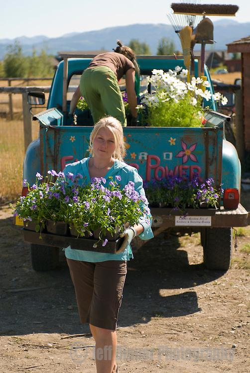 Two young women unload their landscaping truck in Wilson, Wyoming.