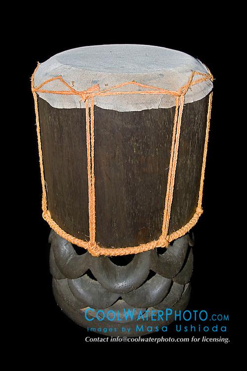 historic Hawaiian ceremonial drum made with tough shark skin head and traditional, endemic koa wood, Acacia koa, Hawaii