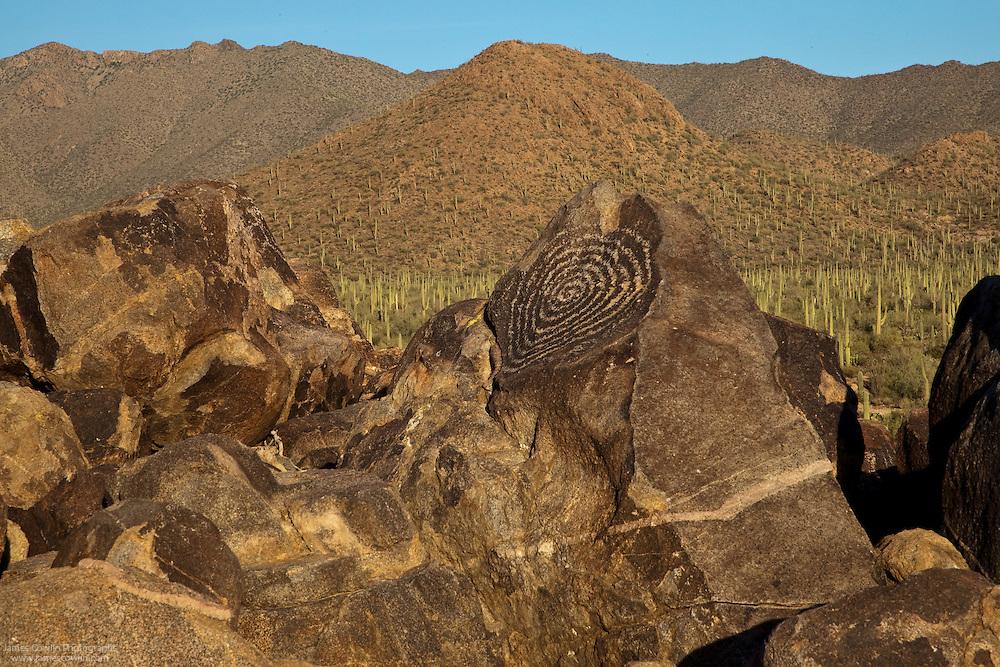 Spiral petroglyph on Signal Hill in Saguaro National Park, Arizona