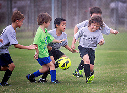 05 October 2013. Carrolton Boosters Soccer. New Orleans, Louisiana. <br /> U8 Flash v Bulls<br /> Photo; Charlie Varley