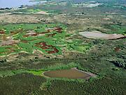 Nederland, Flevoland, Almere-Lelystad, 26-08-2019; natuurgebied de Oostvaardersplassen, Noordelijk gedeelte tussen Grote Plas en Krentenplas. Natura 2000-gebied, in beheer bij Staatsbosbeer, onderdeel van Nationaal Park Nieuw Land. <br /> Oostvaardersplassen area, national nature reserve.<br /> luchtfoto (toeslag op standard tarieven);<br /> aerial photo (additional fee required);<br /> copyright foto/photo Siebe Swart