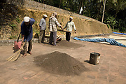 Coffee beans drying in the sun with workers around. Coorg or Kadagu is the largest coffee growing region of India, in the state of Karnataka, the inhabitants - the Kodavas have been cultivating crops such as coffee, black pepper and cardamon for many generations.