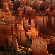 Early morning light illuminates the fantastic hoodoos of Bryce Canyon National Park, UT.