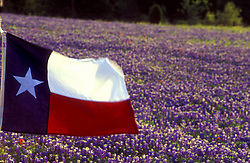 Texas flag flying in front of a field of bluebonnets