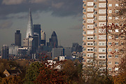 Seen through autumnal trees is the capital and the tall, prominent Shard rising in the background with a tower block from Brockwell Park on 18th November 2016, in Herne Hill, Lambeth SE24 south London, England.