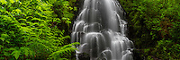 A panoramic view of Fairy Falls in Oregon's Columbia River Gorge.