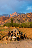 Men herding goats, Tashkurgan (means Stone Fortress in Uyghur), at 10,100 feet, along the Karakoram Highway. It was a caravan stop on the Silk Road and all routes of the Silk Road converged here to journey southward to Pakistan. It sits on the borders of both Afghanistan and Tajikistan, and is close to the border of Kyrgyzstan and Pakistan.  The majority population in the town are ethnic Mountain Tajiks. Xinjiang Province, China.