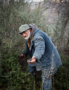 A man named Manolis picking snails. In and around the village of Meronas.