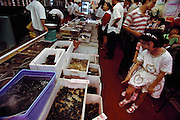 Two little girls leave their parent's table to marvel at the fresh catches in the Nan Hei (South Sea City Seafood) Restaurant which resemble the bins of various catches at a fish market; some of the selections include flesh-colored marine worms, plump pink silkworm pupae, and shiny black hard shelled water beetles, all sold not as bait, but as food. Clients choose their fish or insects and tell the staff how to prepare them. Ten minutes later they are on the table. Guangzhou province, China. (Man Eating Bugs, page 88-89)