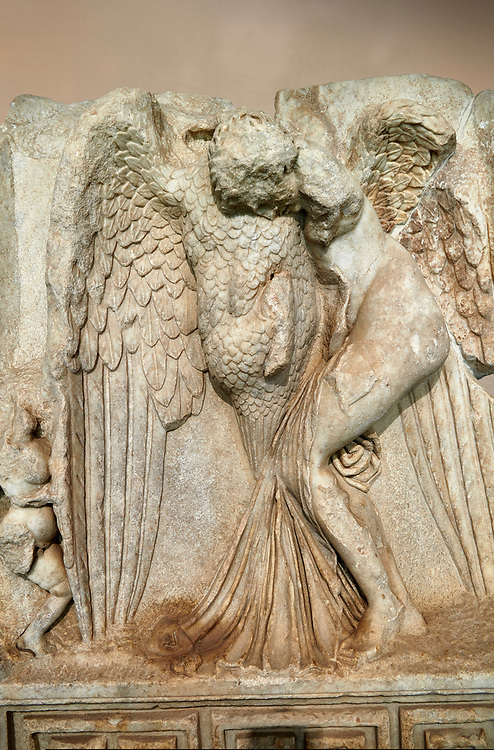Close up of a Roman Sebasteion relief  sculpture of Leda and swan, Aphrodisias Museum, Aphrodisias, Turkey. <br /> <br /> Zeus disguised as a swan assaults Spartan princess Leda. The bird stands on the tips of its outspread wings and presses its webbed foot on the thigh of modest, struggling Leda. The swan is supported from behind a small Eros. From this encounter came a large egg from which were born Helen and the Dionskouroi twins, Kastor and Polydeukes .<br /> <br /> If you prefer to buy from our ALAMY STOCK LIBRARY page at https://www.alamy.com/portfolio/paul-williams-funkystock/greco-roman-sculptures.html . Type -    Aphrodisias     - into LOWER SEARCH WITHIN GALLERY box - Refine search by adding a subject, place, background colour, museum etc.<br /> <br /> Visit our ROMAN WORLD PHOTO COLLECTIONS for more photos to download or buy as wall art prints https://funkystock.photoshelter.com/gallery-collection/The-Romans-Art-Artefacts-Antiquities-Historic-Sites-Pictures-Images/C0000r2uLJJo9_s0