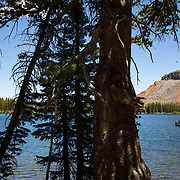 Outdoor adventure in the Mammoth Lakes, region of the Eastern Sierras in California.