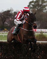 Paloma Blue ridden by Mark Walsh clears the last on the way to winning the Paddy Power 'Live Stream All Irish Racing On Our App' Beginners Steeplechase during day two of the Leopardstown Christmas Festival at Leopardstown Racecourse.