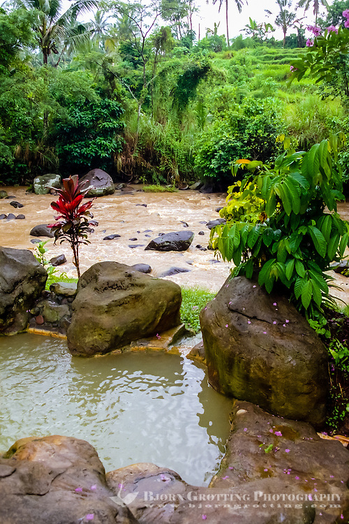 Bali, Tabanan, Yeh Panes. Hot springs and spa. A small pool, the Yeh Ho river in the background.