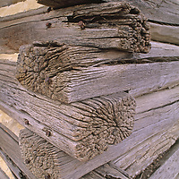 Morticed joints on an abandonded log cabin in Missouri Breaks.