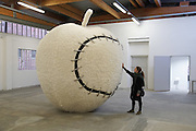"""""""The Apple Made Whole Again""""<br /><br />Michelangelo Pistoletto (born 25 June 1933) is an Italian painter, action and object artist, and art theorist. Pistoletto is acknowledged as one of the main representatives of the Italian Arte Povera. His work mainly deals with the subject matter of reflection and the unification of art and everyday life in terms of a Gesamtkunstwerk<br /><br />In 1996, he founded the art city Cittadelarte – Fondazione Pistoletto in a discarded textile factory near Biella. Its objective, in brief, is """"to inspire and produce a responsible change in society by means of creative ideas and projects."""" Nowadays Pistoletto is particularly concerned with environmental issues, and to develop awareness about using only what we need and to create awareness about over consumption."""