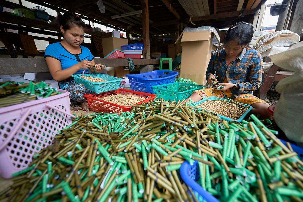 Women make cigarettes in Tuingo, an ethnic Chin village in Myanmar.
