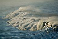 Seagull flying over ocean waves, San Mateo County coast, California