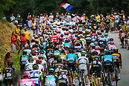 Peloton during the 105th Tour de France 2018, Stage 13, Bourg d'Oisans - Valence (169,5 km) on July 20th, 2018 - Photo Luca Bettini / BettiniPhoto / ProSportsImages / DPPI