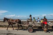 Horse drawn cart<br /> Georgetown<br /> GUYANA<br /> South America