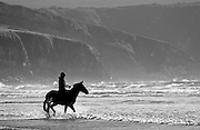 Silhouette young woman rides horse on Broad Haven Beach, Pembrokeshire, Wales, United Kingdom