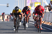 Arrival Sprint, KRISTOFF Alexander (NOR), Mark CAVENDISH (Gbr), VAN AVERMAET Greg (BEL), during the 15th Tour of Qatar 2016, Stage 2, Qatar University - Qatar University (145,5Km), Test Event Doha Road World Championships 2016, on February 9, 2016 - Photo Tim de Waele / DPPI