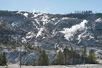 Fumaroles on Roaring Mountain Yellowstone National Park