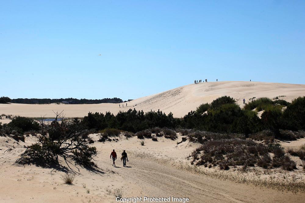 The sand dunes of Jockey's Ridge State Park. Photograph by Dennis Brack