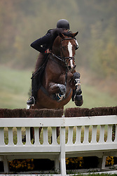 Steegmans Raf, BEL, Chico s Man VDF Z<br /> World Championship Young Eventing Horses<br /> Mondial du Lion - Le Lion d'Angers 2016<br /> © Hippo Foto - Dirk Caremans<br /> 22/10/2016