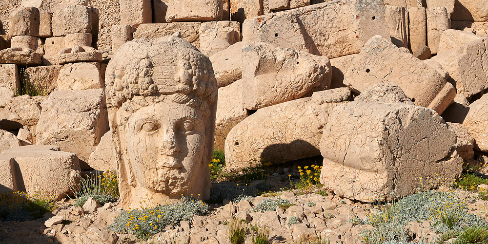 Statue head of Commagene in front of the 62 BC Royal Tomb of King Antiochus I Theos of Commagene, west Terrace, Mount Nemrut or Nemrud Dagi summit, near Adıyaman, Turkey .<br /> <br /> If you prefer to buy from our ALAMY PHOTO LIBRARY  Collection visit : https://www.alamy.com/portfolio/paul-williams-funkystock/nemrutdagiancientstatues-turkey.html<br /> <br /> Visit our CLASSICAL WORLD HISTORIC SITES PHOTO COLLECTIONS for more photos to download or buy as wall art prints https://funkystock.photoshelter.com/gallery-collection/Classical-Era-Historic-Sites-Archaeological-Sites-Pictures-Images/C0000g4bSGiDL9rw