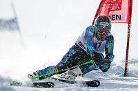 ALPINE SKIING - WORLD CUP 2012/2013 - SOELDEN (AUT) - 28/10/2012 - PHOTO  ALESSANDRO TROVATI / PENTAPHOTO / DPPI - MEN GIANT SLALOM - Ted Ligety (USA) - WINNER