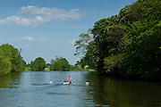 Oarsman rowing skiff on the River Thames in Berkshire, UK