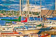 USA, Washington, Seattle. The Lockhaven Marina on Salmon Bay.