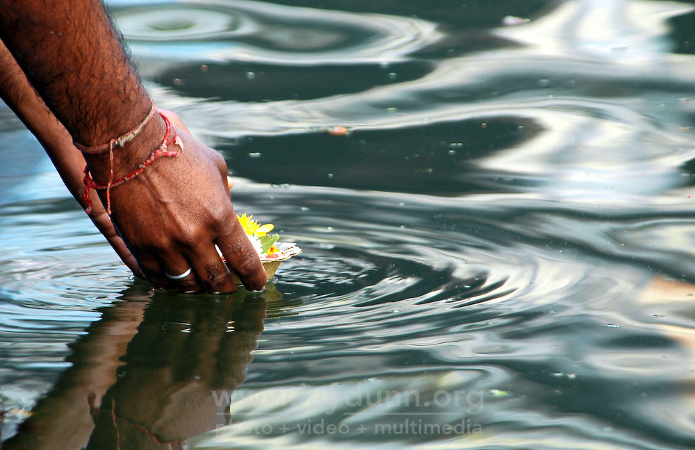 India, Nasik, 2006. During Hindu puja, or religious ritual, hundreds of offerings are placed upon the water, carrying hopes and prayers forward. The Godavari is one of India?s seven holy rivers.
