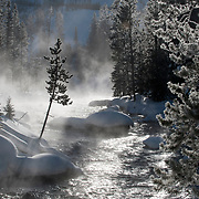 The Gibbon River in Yellowstone National Park.