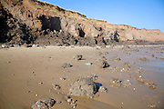 Rapidly eroding boulder clay cliffs on the Holderness coast, Mappleton, Yorkshire, England