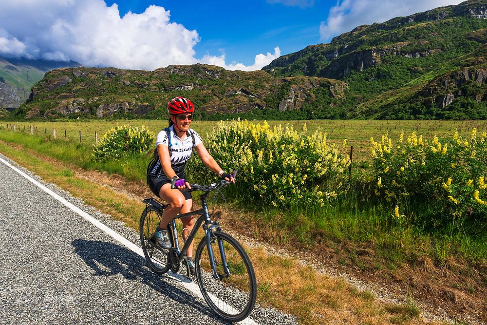 Cyclist on Glendhu Bay, Wanaka, Otago, South Island, New Zealand