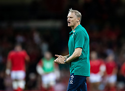 Head Coach Joe Schmidt of Ireland during the pre match warm up<br /> <br /> Photographer Simon King/Replay Images<br /> <br /> Friendly - Wales v Ireland - Saturday 31st August 2019 - Principality Stadium - Cardiff<br /> <br /> World Copyright © Replay Images . All rights reserved. info@replayimages.co.uk - http://replayimages.co.uk