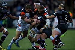 Newcastle Falcons Sam Lockwood is tackled during the Heineken Champions Cup match at Kingston Park, Newcastle.