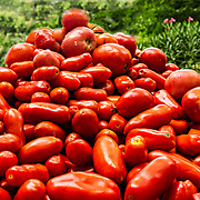 Every year over the Labor Day week end we get together with my wife's sister and can five or six bushels of tomatoes.  It makes for a long day, but we get to use them all year long