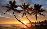 Sunrise, Punaluu, Windward Oahu, Hawaii